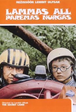 Постер фильма Овечка в правом нижнем углу (1992)