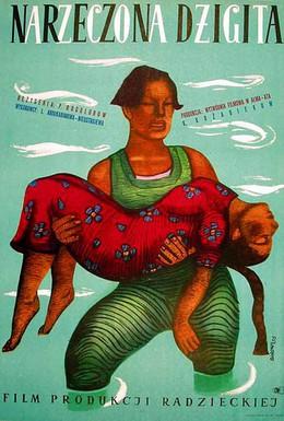 Постер фильма Девушка-джигит (1955)