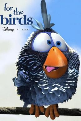 Постер фильма О птичках (2000)