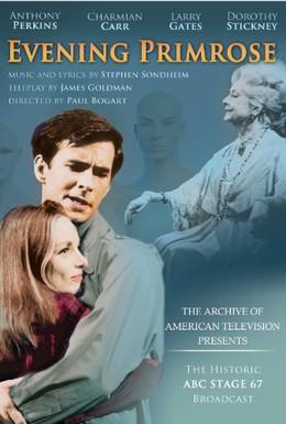 Постер фильма Вечерний первоцвет (1966)