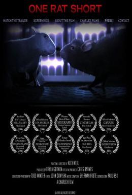 Постер фильма История одной крысы (2006)