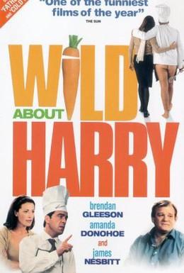 Постер фильма История о Гарри (2000)
