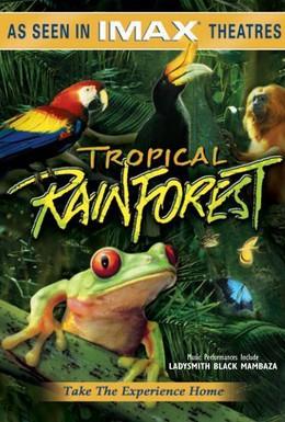 Постер фильма Тропический лес (1992)