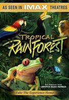 Тропический лес (1992)