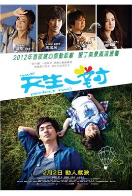 Постер фильма Идеальная пара (2012)