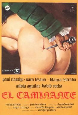 Постер фильма Странник (1979)