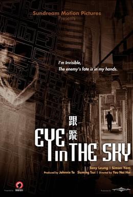 Постер фильма Око небесное (2007)