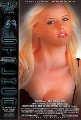 Постер фильма Преследующий (2005)