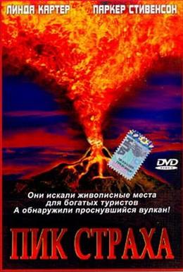 Постер фильма Пик страха (2003)