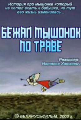 Постер фильма Бежал мышонок по траве (2003)
