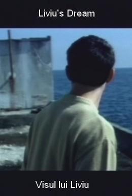 Постер фильма Сон Ливиу (2004)