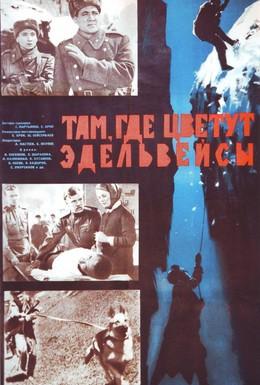Постер фильма Там, где цветут эдельвейсы (1965)