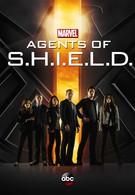Агенты Щ.И.Т. (2013)