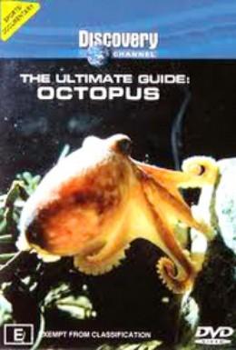 Постер фильма BBC: Последний проводник: осьминоги (1999)