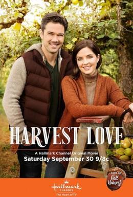 Постер фильма Любовь во время урожая (2017)