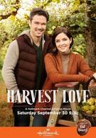 Любовь во время урожая (2017)