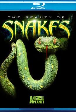 Постер фильма Красота змей (2005)