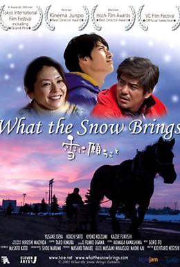 Постер фильма Что приносит снег (2005)