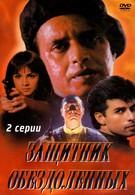 Защитник обездоленных (1994)