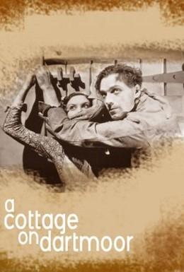 Постер фильма Коттедж в Дартмуре (1929)