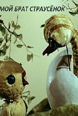 Постер фильма Мой брат страусенок (1971)