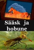 Комар и лошадь (2001)