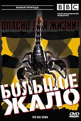 Постер фильма BBC: Большое жало (2005)