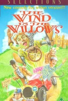 Постер фильма Ветер в ивах (1996)