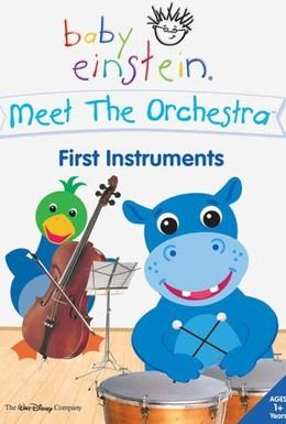 Постер фильма Знакомство с оркестром (2006)