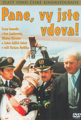 Постер фильма Пан, вы вдова (1971)