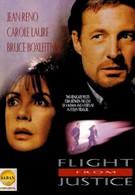 Бегство от правосудия (1993)