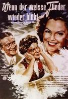 Когда цветет белая сирень (1953)
