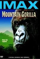 Горная горилла (1992)