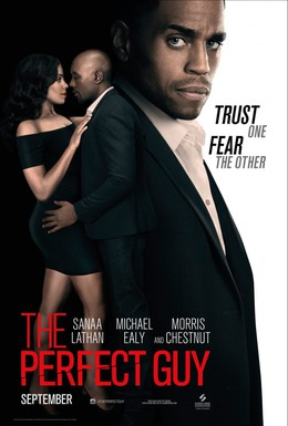 Постер фильма Идеальный парень (2015)