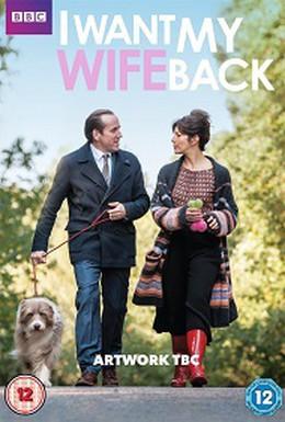 Постер фильма Хочу вернуть свою жену (2016)