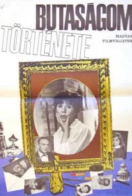 Постер фильма История моей глупости (1966)