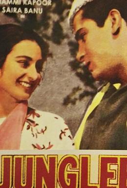 Постер фильма Дикий (1961)