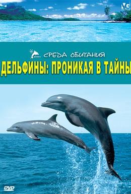 Постер фильма Дельфины: Проникая в тайны (2006)