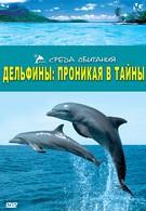 Дельфины: Проникая в тайны (2006)