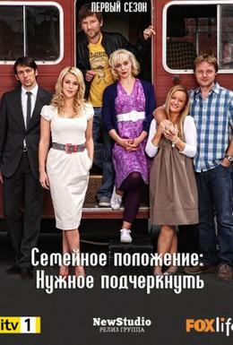 Постер фильма Семейное положение : (2010)