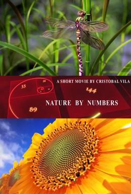 Постер фильма Природа в числах (2010)