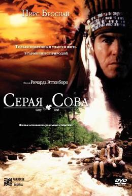 Постер фильма Серая сова (1999)
