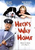 Гек возвращается домой (1996)