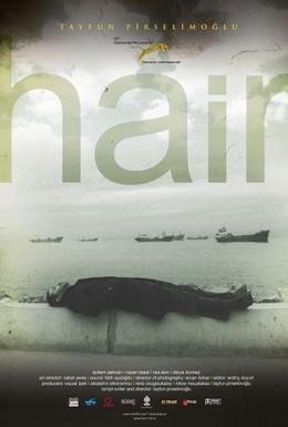 Постер фильма Волосы (2010)