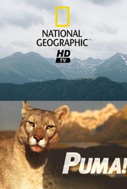 Постер фильма Пума! (2013)