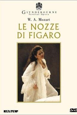 Постер фильма Женитьба Фигаро (1994)