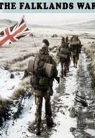 Фолклендская война (2002)
