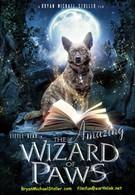 Удивительный волшебник из Лапы (2015)