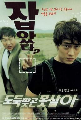 Постер фильма Укради, если сможешь (2002)