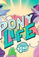 Мой маленький пони (Пони жизнь) (2020)